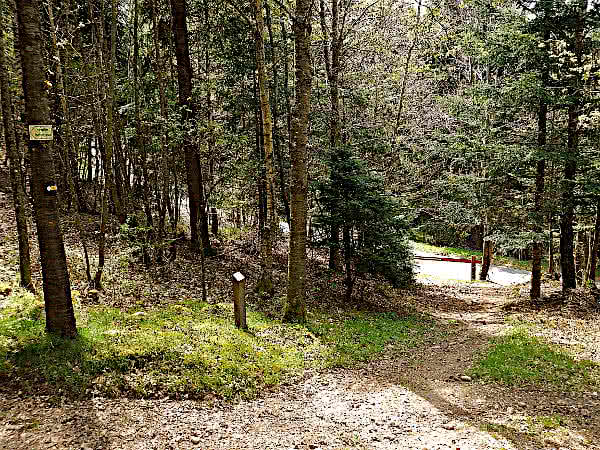 Arboretum Anould: Unterer Zugang.