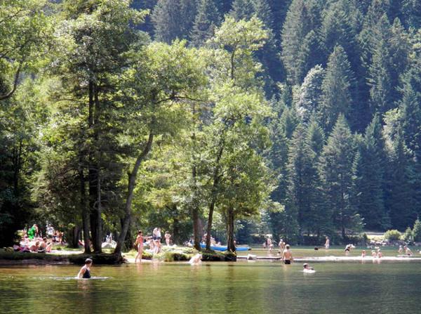 Badesee Lac de Longemer. Am Zufluss.