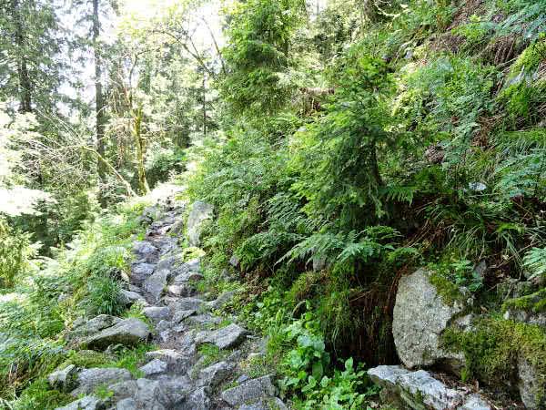 Schwieriges Teilstück des Felsenweg.