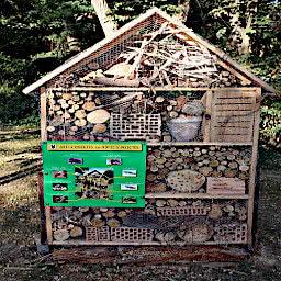 Ein Insektenhotel an der Weiß