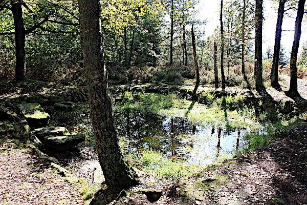 Ein Bassin der Keltensiedlung