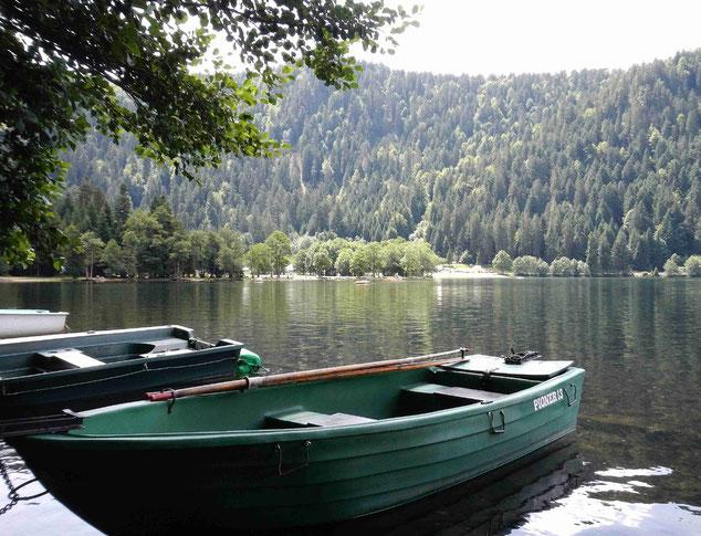 Lac de Longemer. Embarcadère pour bateaux.