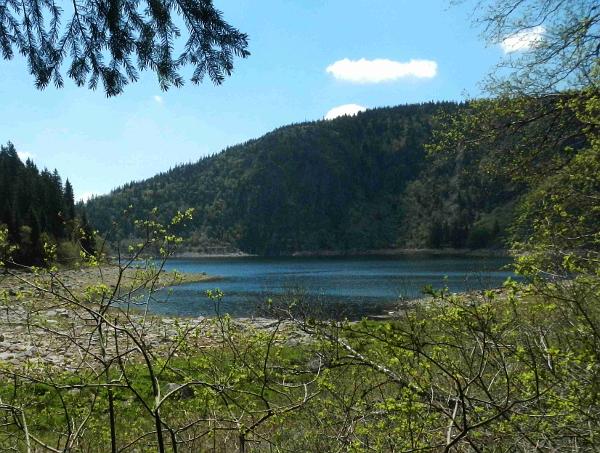 Unten am Lac Blanc