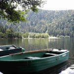 Conseil autour du chalet. Lac de Longemer.
