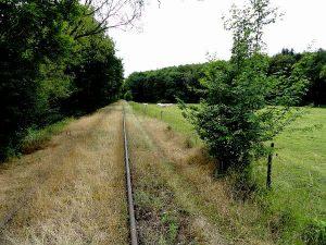 Ein fast zugewachsenes Eisenbahngleis der Draisine Magnieres