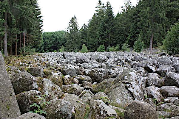 Felsenfeld Champ de roches.Bei Barbey-Seroux.