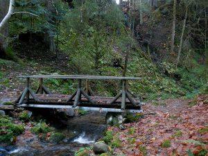 La cascade Saut de la Bourrique